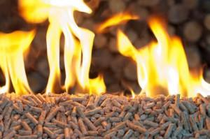 Pellet price in Germany in July 6% lower than last year