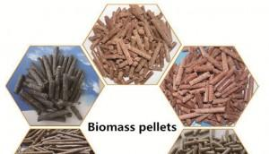 History of Wood & Biomass Pellets