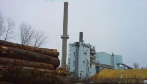 Wood Pellet Power: A Climate Threat?