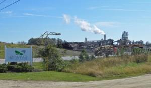 Growing Wood Pellet Industry Raises Environmental Questions