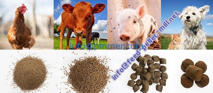Electric Flat Die Feed Pellet Mill,Animal feed pellet mill pelleting pig,cattle,chicken feed-products-of-feed-pelleting