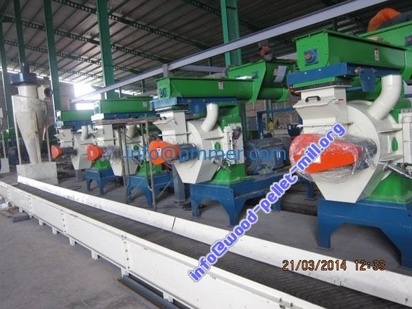 How to build Big Automate Biomass Wood Pellet Production Line 15-30T/H
