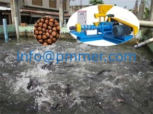The Floating Fish Feed Machine in Nigeria