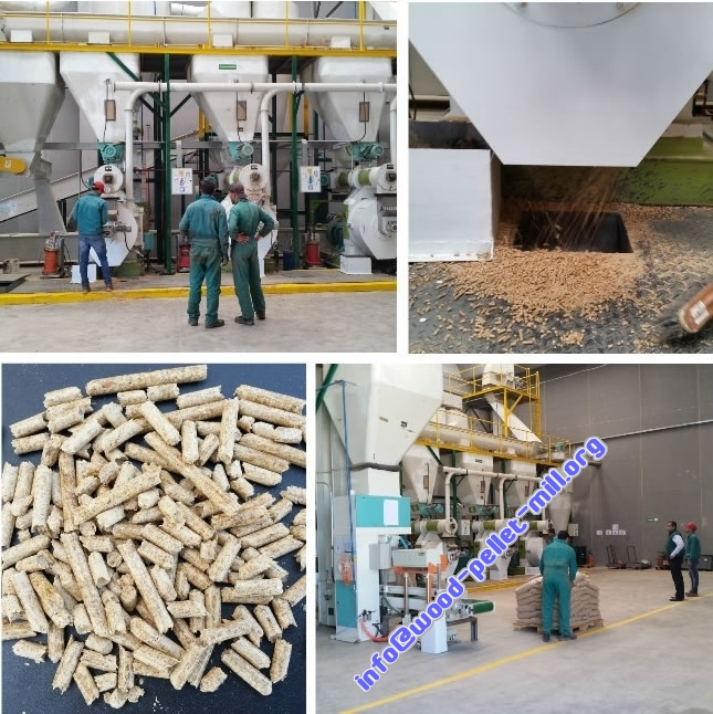Hot sale 1-10Ton Wood biomass pellets production line