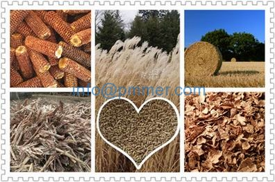 ood pellet machine,vertical ring die wood pellet machine,large wood pellet machine,biopellet machine